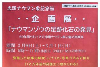 2/8~3/1 忠類ナウマン象記念館~企画展~「ナウマンマンゾウ足跡化石の発見」